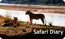 Visit our Safari Diary website.